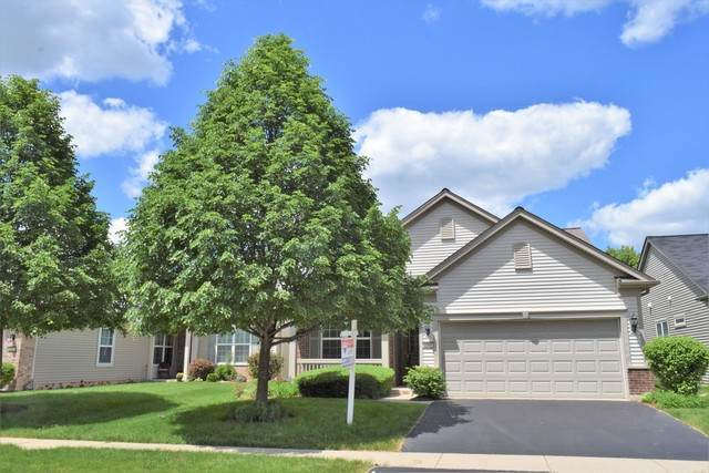 2769 Cascade Falls Circle, Elgin, IL 60124 (MLS #10730508) :: Jacqui Miller Homes