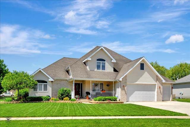 1587 Carriage Lane, Bourbonnais, IL 60914 (MLS #10730571) :: Jacqui Miller Homes