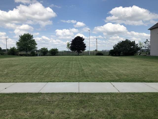 25746 Meadowland Circle, Plainfield, IL 60585 (MLS #10730679) :: Littlefield Group