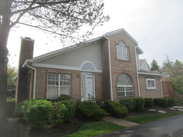 429 W Parkside Drive, Palatine, IL 60067 (MLS #10730895) :: Property Consultants Realty
