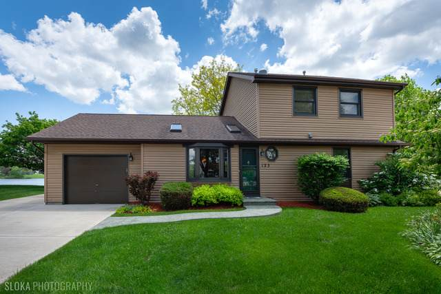 123 Heather Lane, Streamwood, IL 60107 (MLS #10731011) :: Property Consultants Realty