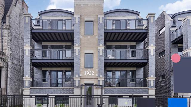 3918 S King Drive 1A, Chicago, IL 60653 (MLS #10731136) :: Property Consultants Realty