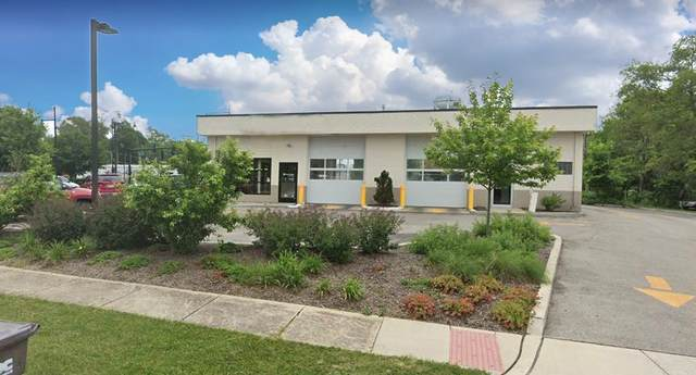 487 Virginia Street, Crystal Lake, IL 60014 (MLS #10731166) :: Lewke Partners