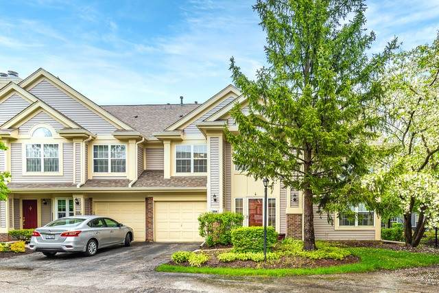 1214 Old Mill Lane #1214, Elk Grove Village, IL 60007 (MLS #10731449) :: Property Consultants Realty