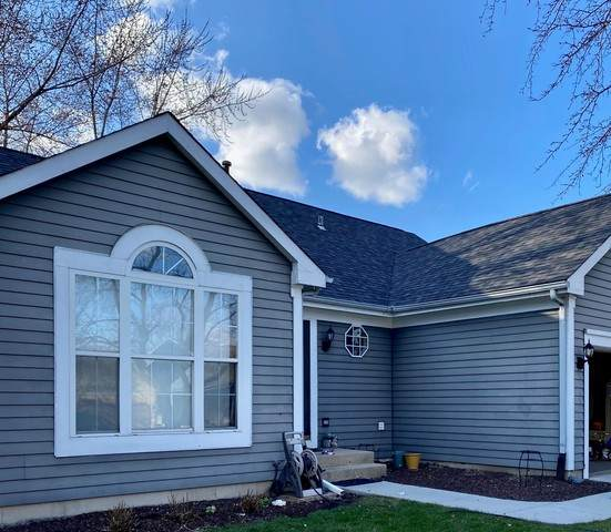 1066 Little Falls Drive, Elgin, IL 60120 (MLS #10731465) :: Property Consultants Realty