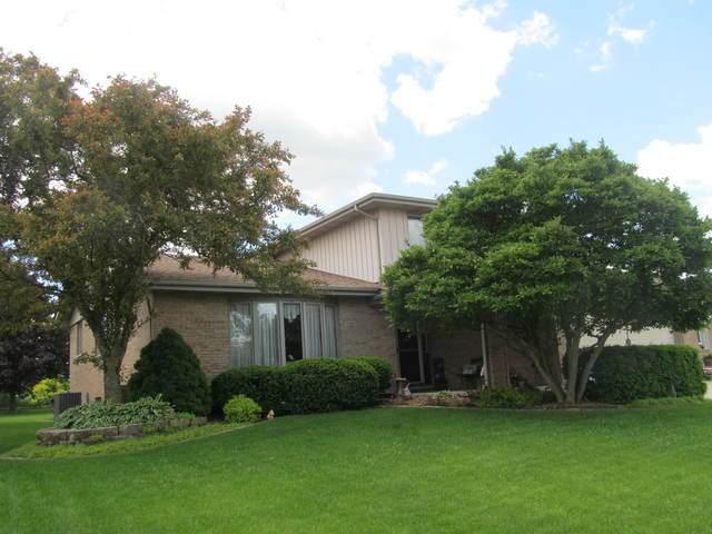 13541 Maverick Trail, Homer Glen, IL 60491 (MLS #10731538) :: Angela Walker Homes Real Estate Group
