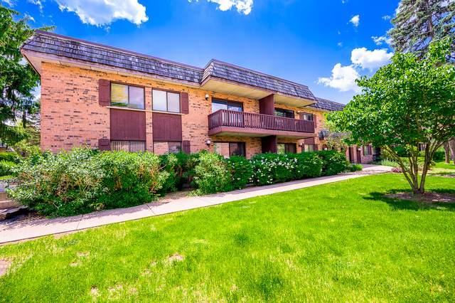 8000 Woodglen Lane #201, Downers Grove, IL 60516 (MLS #10731880) :: The Wexler Group at Keller Williams Preferred Realty