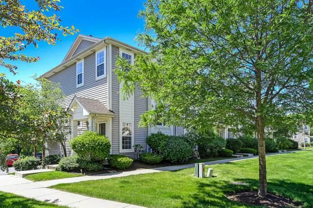 11S501 Rachael Court, Willowbrook, IL 60527 (MLS #10731931) :: Helen Oliveri Real Estate