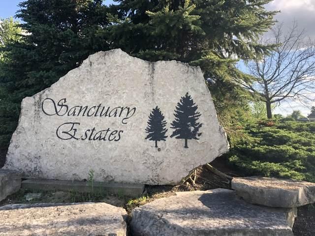 2601 Sanctuary Lane, Spring Grove, IL 60081 (MLS #10731990) :: Touchstone Group