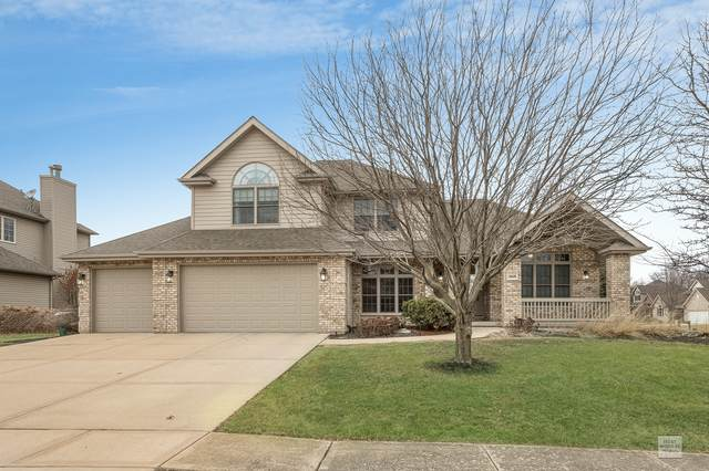 26628 Allison Drive, Channahon, IL 60410 (MLS #10732059) :: Property Consultants Realty