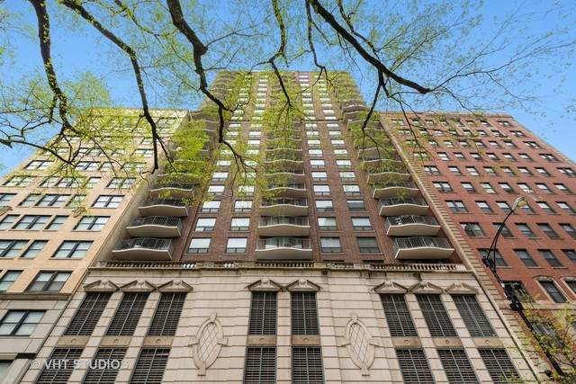 1250 N Dearborn Street 16B, Chicago, IL 60610 (MLS #10732290) :: Property Consultants Realty