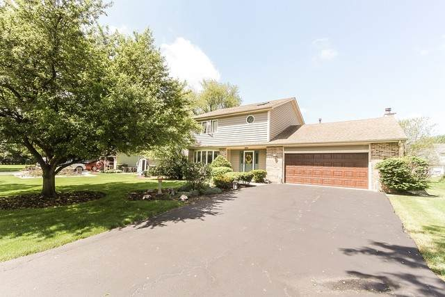 40 Rodenburg Road, Roselle, IL 60172 (MLS #10732326) :: Ani Real Estate