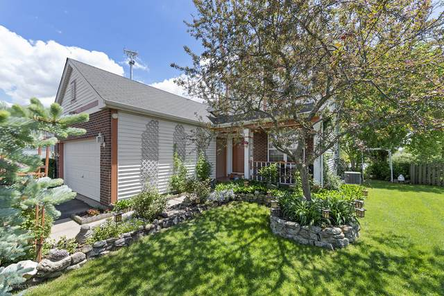 121 Centennial Drive, Hainesville, IL 60073 (MLS #10732431) :: Ryan Dallas Real Estate