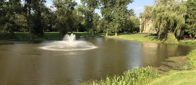 25213 S O'hare Court, Monee, IL 60449 (MLS #10732563) :: Century 21 Affiliated