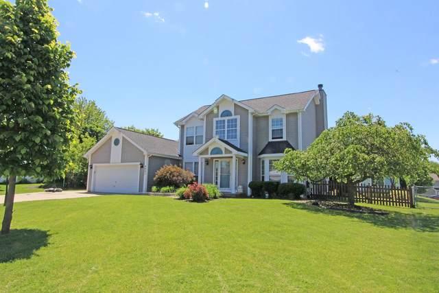 4601 Vista Drive, Island Lake, IL 60042 (MLS #10732670) :: Ani Real Estate