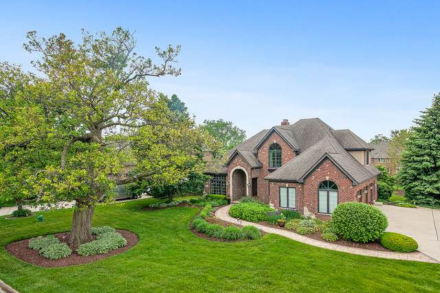 49 Sawgrass Drive, Lemont, IL 60439 (MLS #10732684) :: Property Consultants Realty