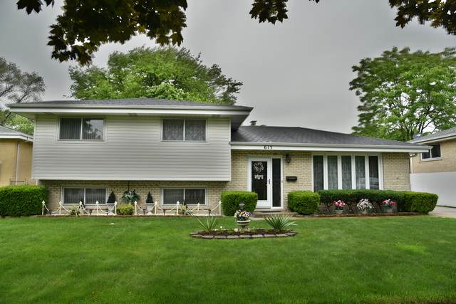 615 Arlene Drive, Wood Dale, IL 60191 (MLS #10732811) :: BN Homes Group