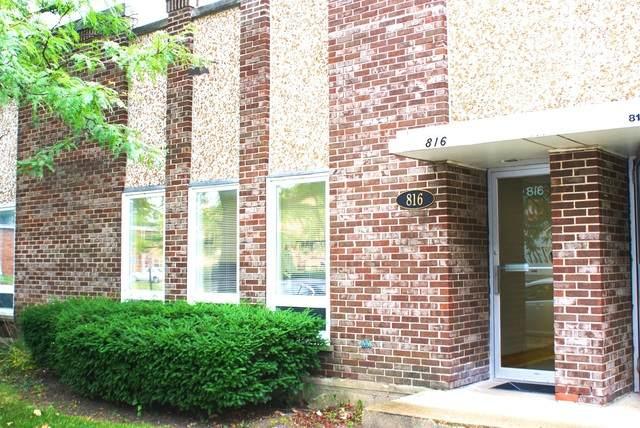 816 Busse Highway, Park Ridge, IL 60068 (MLS #10733083) :: Ani Real Estate