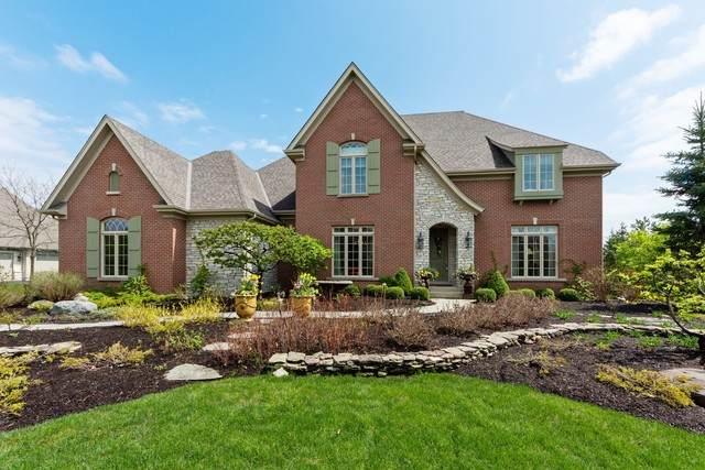 22393 N Prairie Lane, Kildeer, IL 60047 (MLS #10733230) :: Ryan Dallas Real Estate
