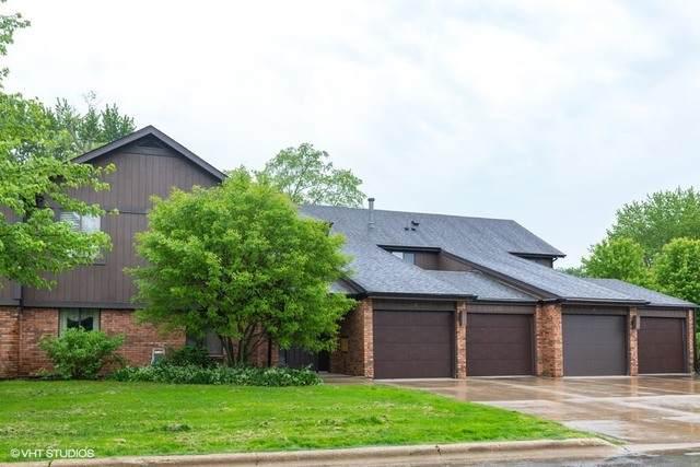 9 Creekside Circle A, Elgin, IL 60123 (MLS #10733246) :: Ryan Dallas Real Estate