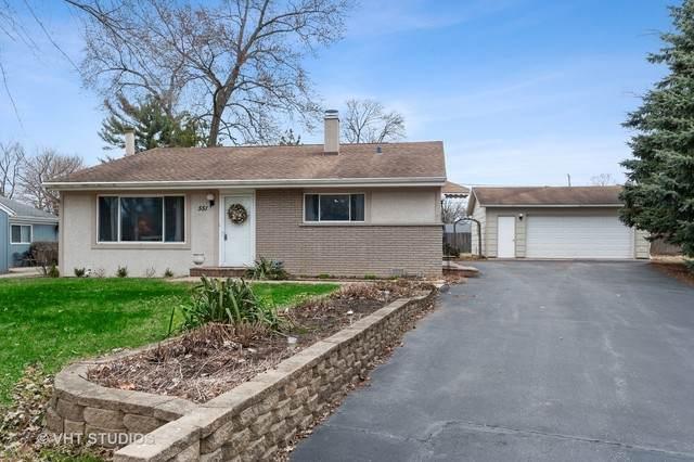 551 Pierce Court, Grayslake, IL 60030 (MLS #10733265) :: Ryan Dallas Real Estate