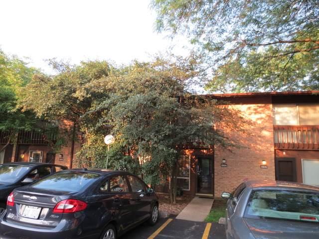 5924 Meadow Drive, Lisle, IL 60532 (MLS #10733276) :: Ani Real Estate