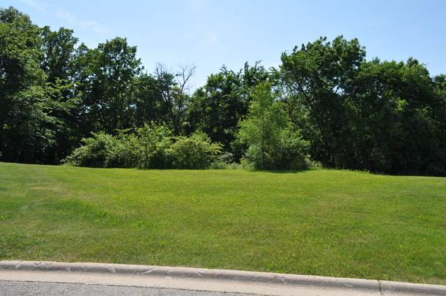 16740 Winding Creek Road, Plainfield, IL 60586 (MLS #10733443) :: John Lyons Real Estate