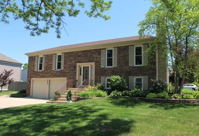 495 S Garden Avenue, Roselle, IL 60172 (MLS #10733693) :: Ani Real Estate