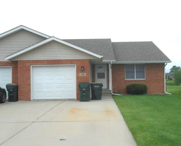 280 S Will Road, Diamond, IL 60416 (MLS #10733807) :: Property Consultants Realty