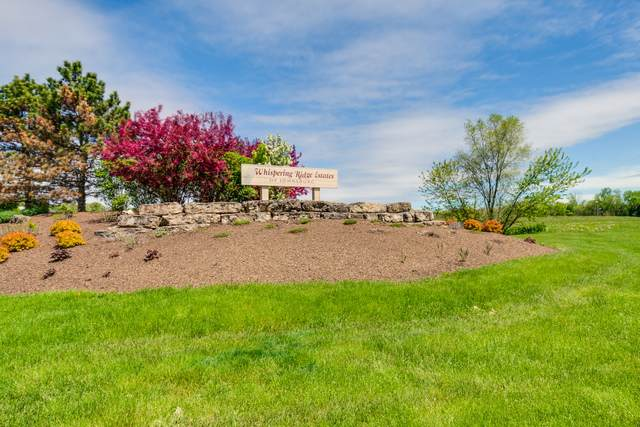 1715 Whispering Ridge Drive - Photo 1