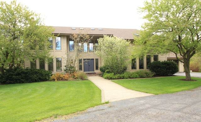 22395 W Thornridge Drive, Kildeer, IL 60047 (MLS #10734080) :: Ryan Dallas Real Estate