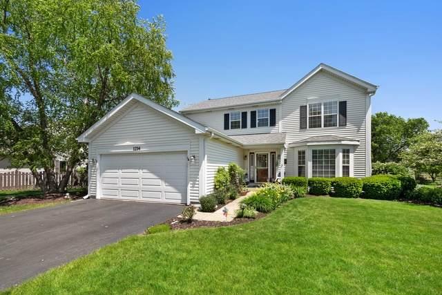 1214 Berkshire Lane, Barrington, IL 60010 (MLS #10734378) :: Ani Real Estate