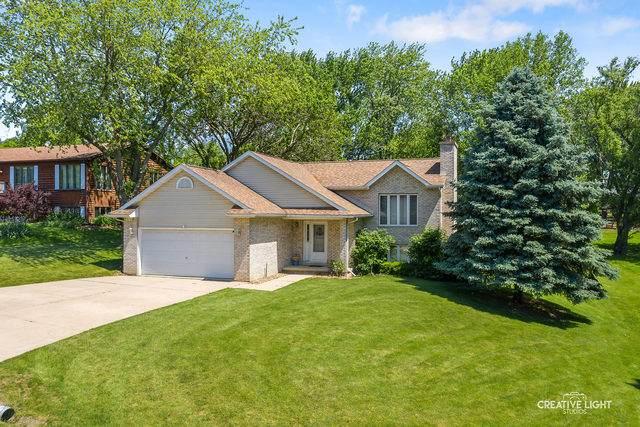 251 E Easy Street, Lake Holiday, IL 60552 (MLS #10735129) :: Touchstone Group