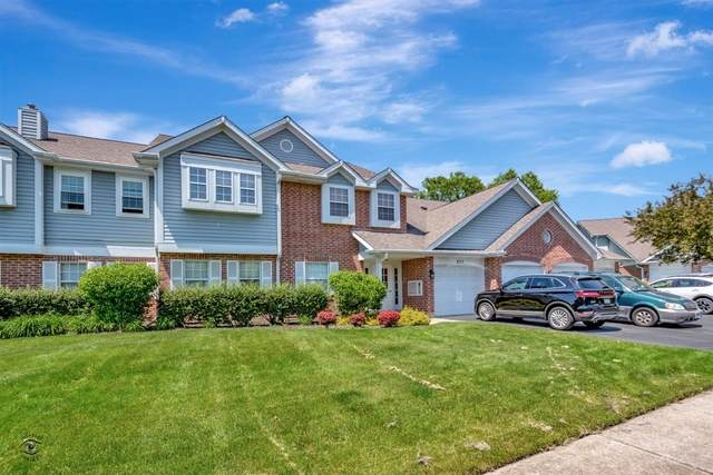 877 Quin Court #102, Naperville, IL 60563 (MLS #10735499) :: Property Consultants Realty