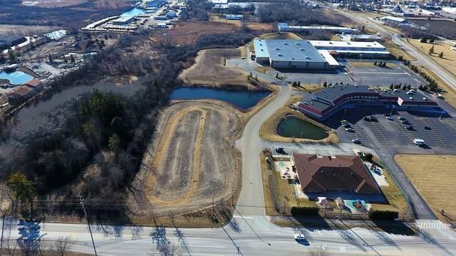 Lot 4 Livorsi Drive, Grayslake, IL 60030 (MLS #10735582) :: Helen Oliveri Real Estate
