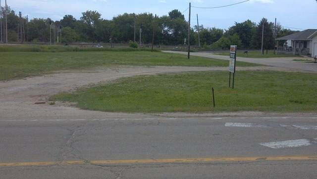 101 Union Street, Davis Junction, IL 61020 (MLS #10735613) :: BN Homes Group