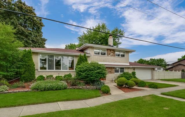 10900 S Knox Avenue, Oak Lawn, IL 60453 (MLS #10735672) :: Ryan Dallas Real Estate