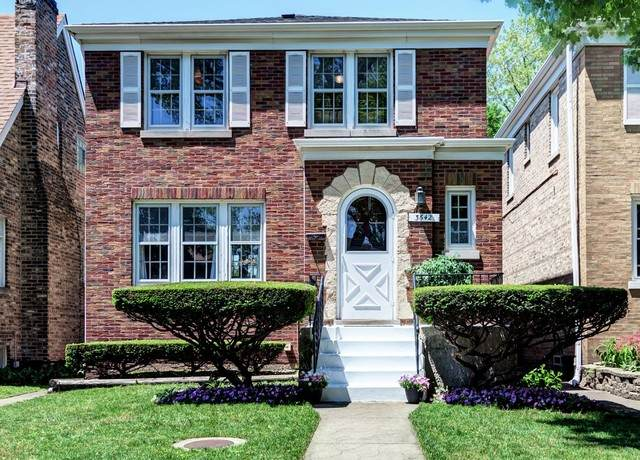 3642 Maple Avenue, Berwyn, IL 60402 (MLS #10735769) :: Helen Oliveri Real Estate