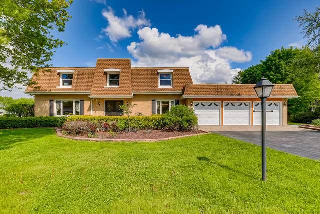 217 Rue Jardin, Deer Park, IL 60010 (MLS #10736362) :: Ani Real Estate