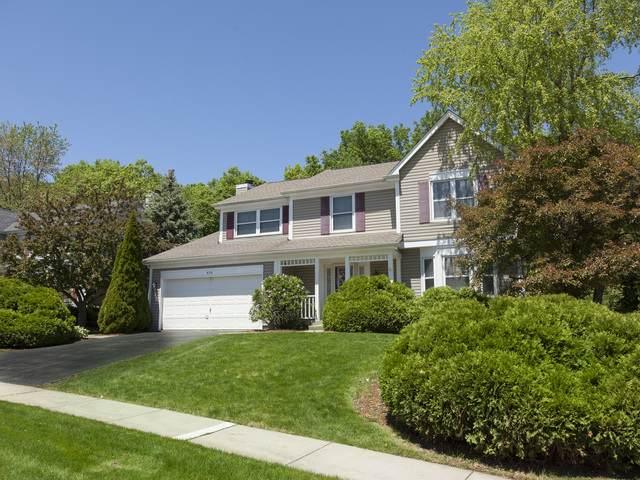 418 Harbor Drive, Carpentersville, IL 60110 (MLS #10736373) :: Ani Real Estate