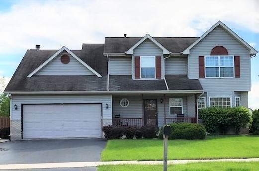 2107 Alpine Way, Plainfield, IL 60586 (MLS #10736403) :: Ani Real Estate