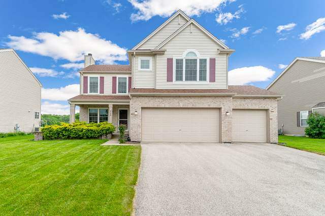 248 Blazing Star Drive, Minooka, IL 60447 (MLS #10736658) :: O'Neil Property Group