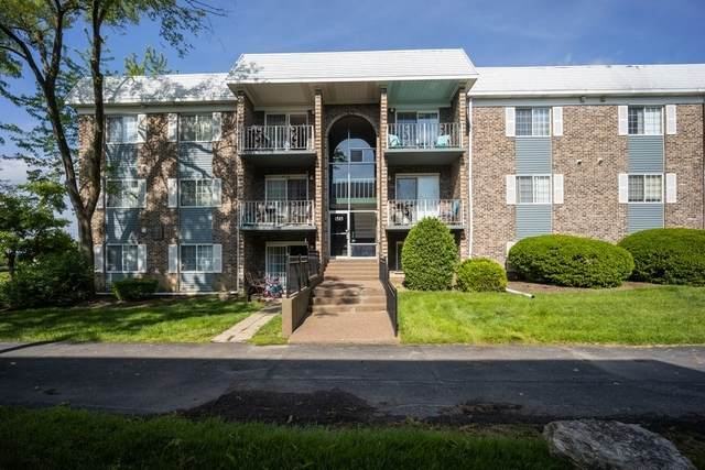 1515 N Windsor Drive #203, Arlington Heights, IL 60004 (MLS #10736687) :: Property Consultants Realty
