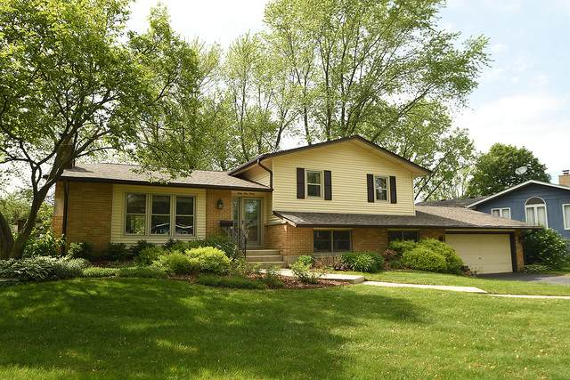 6930 Parkview Drive, Downers Grove, IL 60516 (MLS #10737195) :: Property Consultants Realty