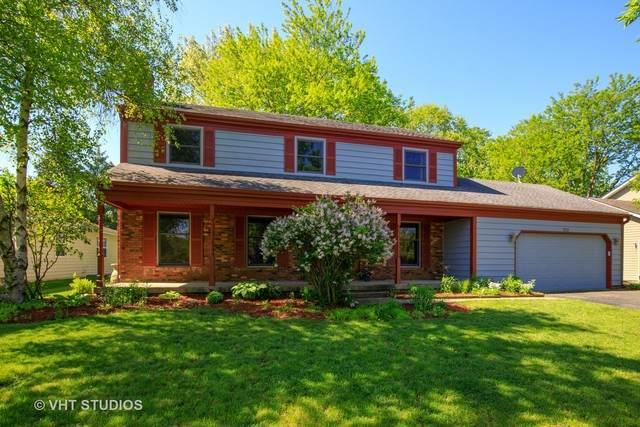 523 Patricia Court, Grayslake, IL 60030 (MLS #10737452) :: Helen Oliveri Real Estate