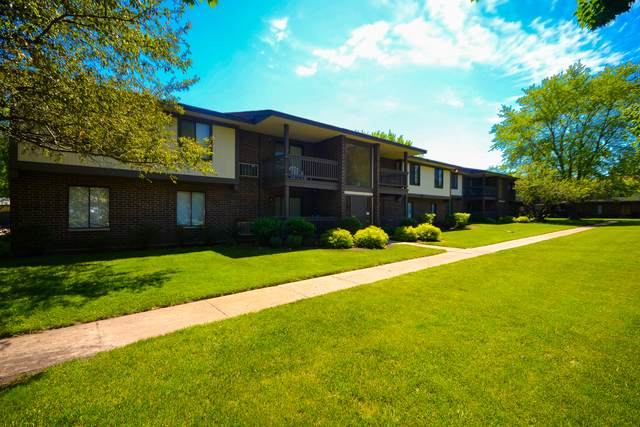 570 Somerset Lane #6, Crystal Lake, IL 60014 (MLS #10738396) :: Property Consultants Realty
