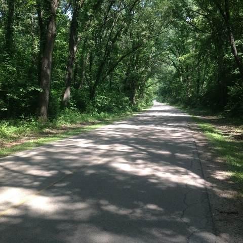 Lot #2 Carper Road, Coal City, IL 60416 (MLS #10738510) :: O'Neil Property Group