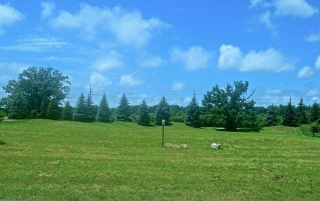 7445 Bonnie Drive - Photo 1