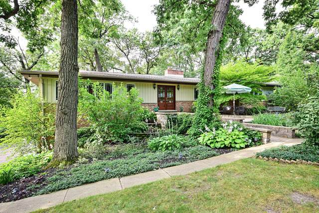 6631 Cochise Drive, Indian Head Park, IL 60525 (MLS #10740215) :: Property Consultants Realty