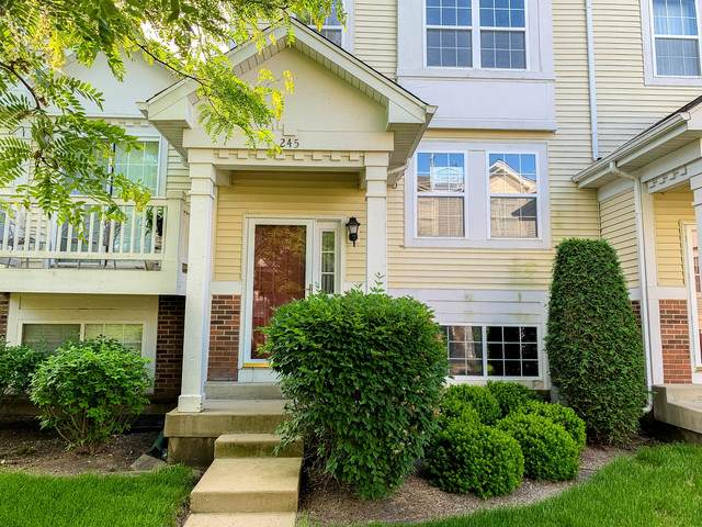 245 Holiday Lane, Hainesville, IL 60073 (MLS #10742973) :: Littlefield Group